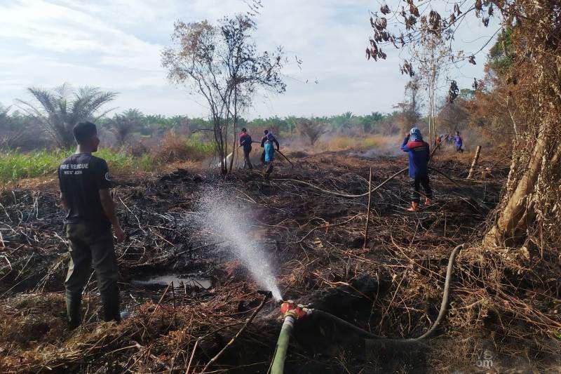 BPBD sulit padamkan kebakaran lahan gambut di Aceh Barat