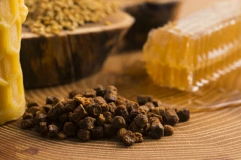 Mengenal propolis lebah, nutrisi dan manfaat bagi kesehatan