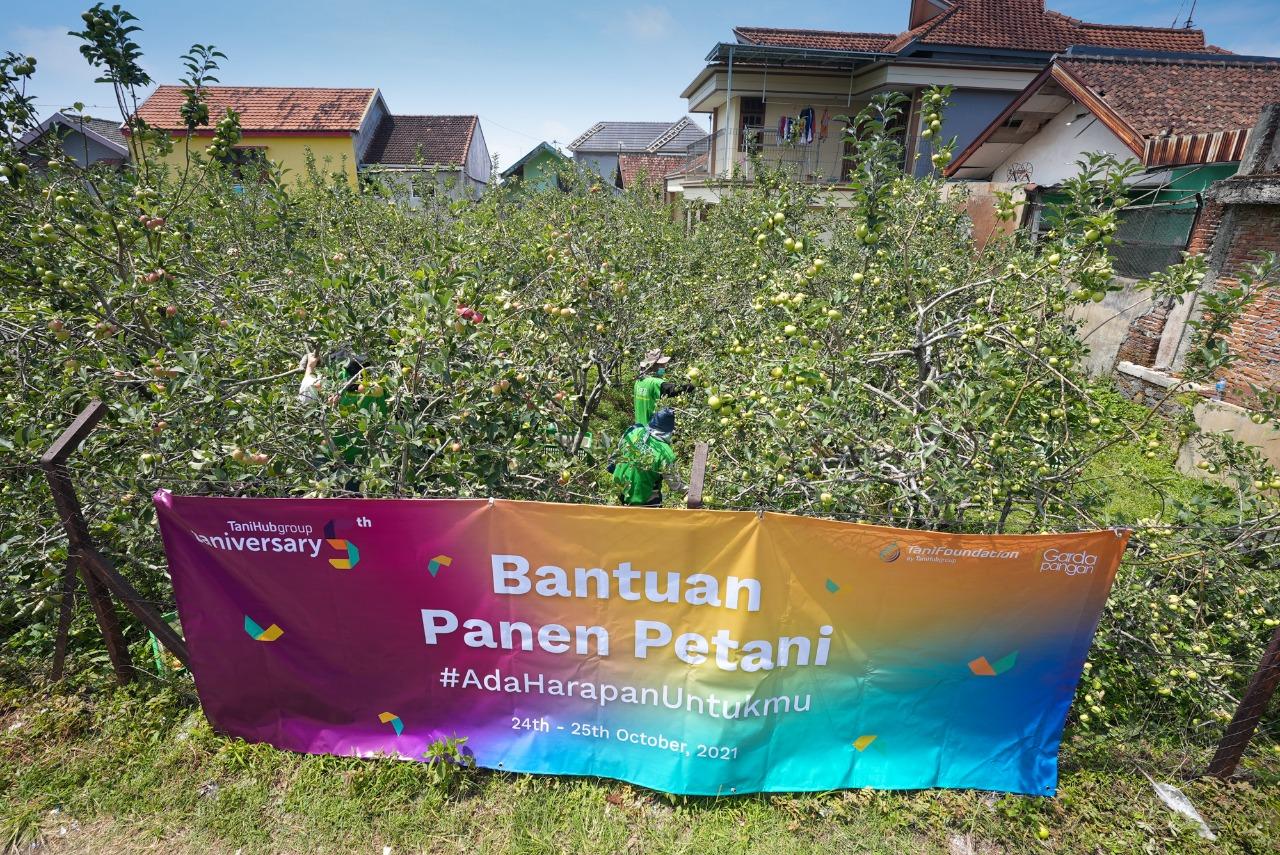 Lima tahun layani pertanian Indonesia,TaniHub Group gelar taniversary