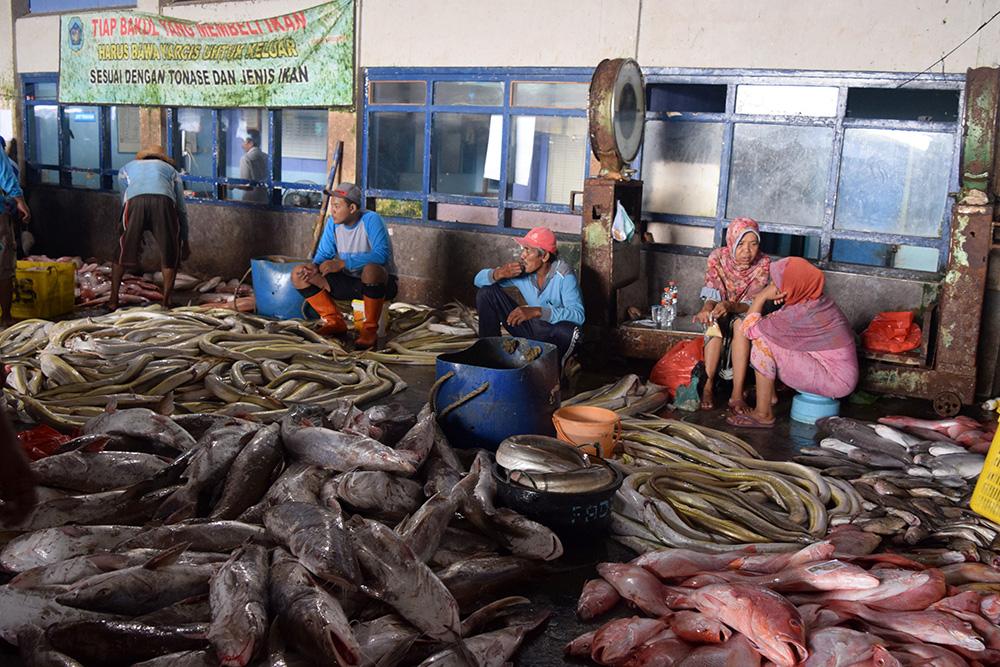 Jokowi tinjau pusat pemasaran dan distribusi ikan brondong di Lamongan